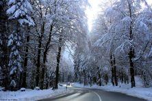 feldberg-winter-001