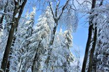 feldberg-winter-002