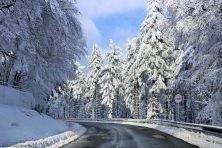 feldberg-winter-003