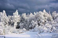 feldberg-winter-004