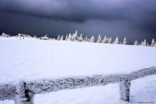 feldberg-winter-008