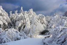 feldberg-winter-011