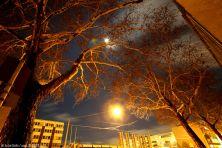 foto-406_990x660