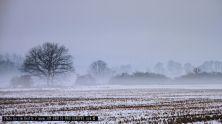 winter-im-spessart-01