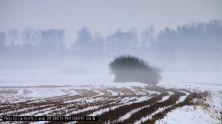 winter-im-spessart-02